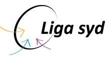 LigaSydLogo-email